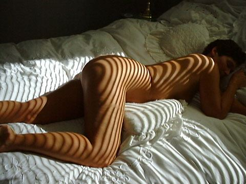Pic #1 - Molly      shows her stripes