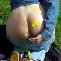Wijfies flowerview