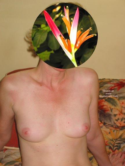 Pic #3 - 48 Yo Bird Of Paradise
