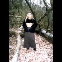 T in Woods