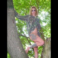 Sammy In The Trees 4
