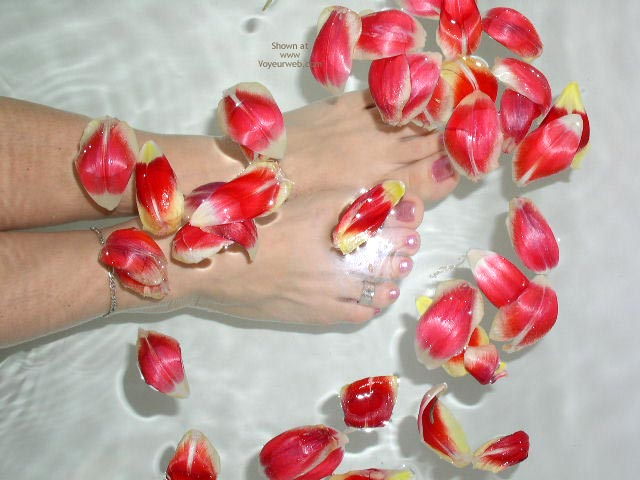 Pic #10 - Flowers On The Water