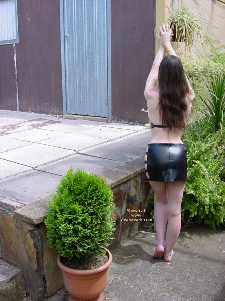 Pic #2 - Aussielouise Backyard 2