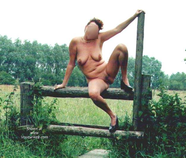 Pic #1 - Dutch NIP 4