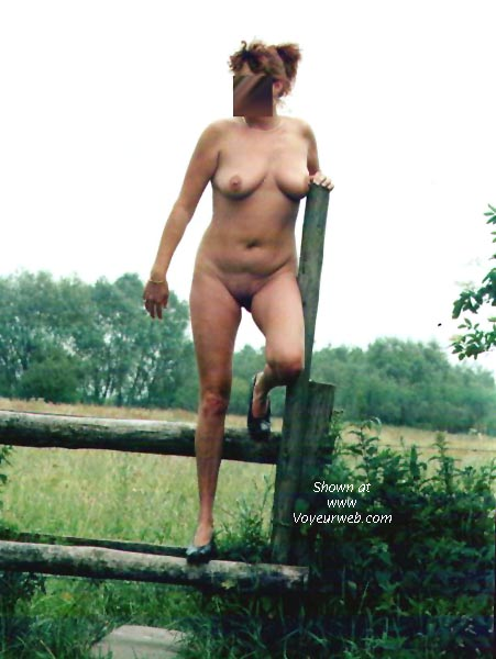 Pic #2 - Dutch NIP 4