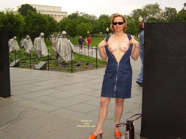 Pic #8 - Flash Cards Bunny At Washington, Dc 2