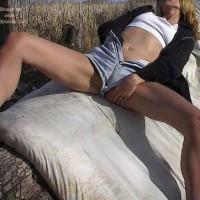 Mistress Stacy Goes Out On A Limb