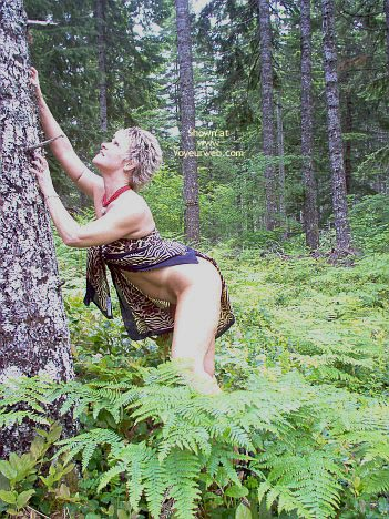 Pic #2 - Angelique: Tigress In The Woods