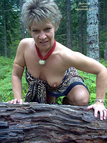 Pic #4 - Angelique: Tigress In The Woods