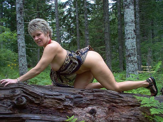 Pic #5 - Angelique: Tigress In The Woods