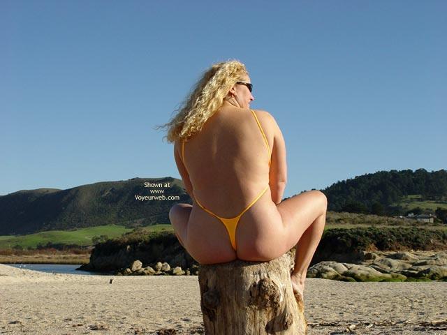 Pic #7 - Curvy Kay : Carmel River Beach