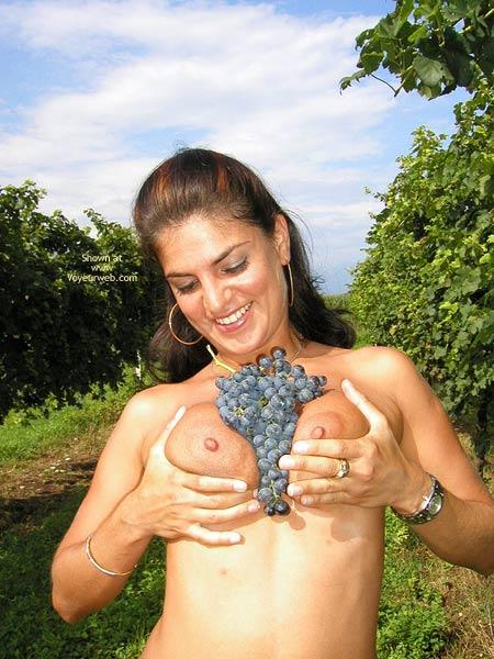 Pic #5 - Sweet Vanessa : The Vineyard