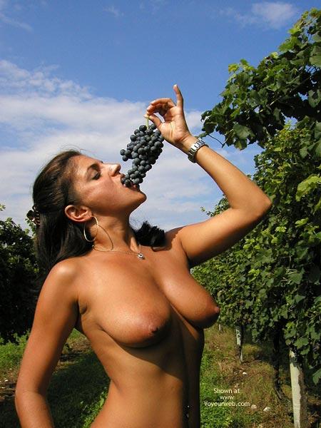 Pic #6 - Sweet Vanessa : The Vineyard