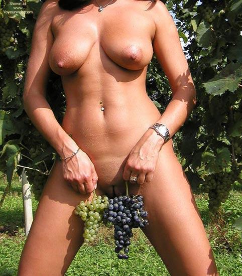 Pic #7 - Sweet Vanessa : The Vineyard