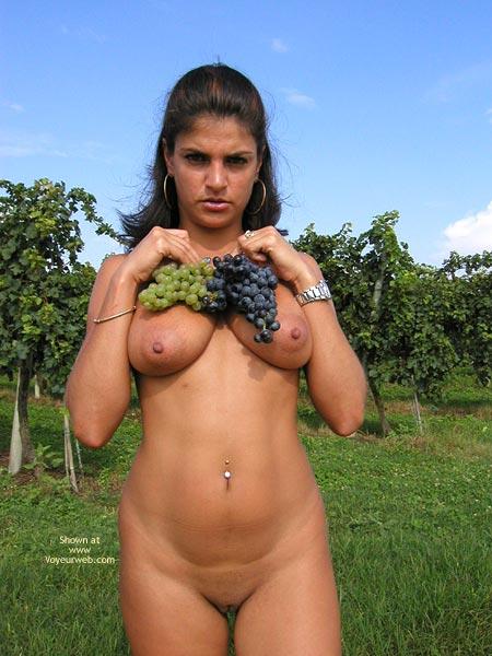 Pic #9 - Sweet Vanessa : The Vineyard