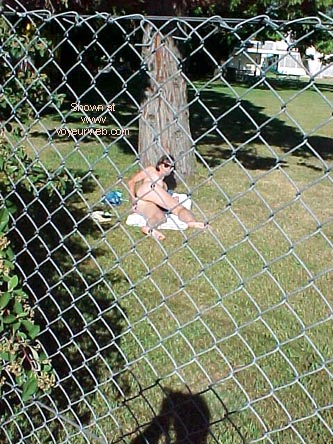 Pic #3 - Through The Fence