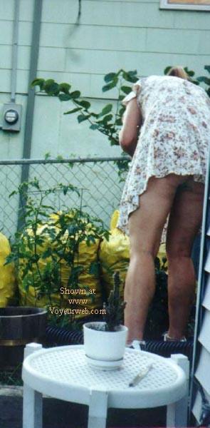 Pic #1 - My Sweet Neighbor' Ass