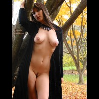 Landing Strip - Brunette Hair, Landing Strip