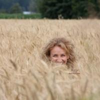 Road Trip Wheat Field