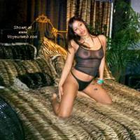 AVN Internext Show