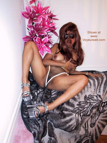 Pic #10 - Lyta Lynx - Purrrrrrrr