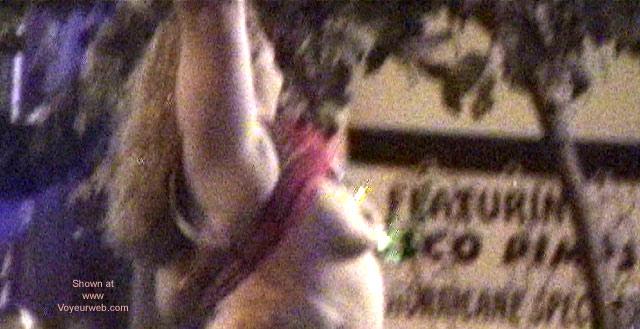 Pic #10 - San Diego Mardi Gras 2001 Part 1