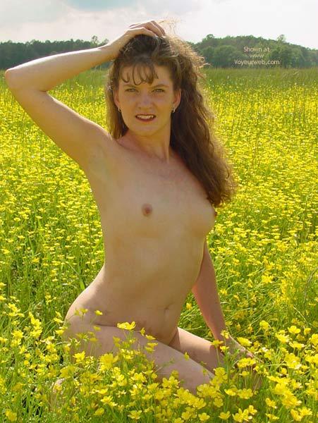 Pic #7 - Daisy'S Field Of Dreams