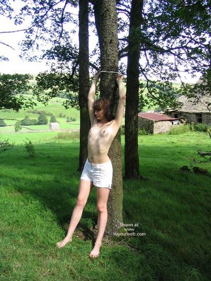 Pic #9 - Slavegirl Penny  Climbing The Tree