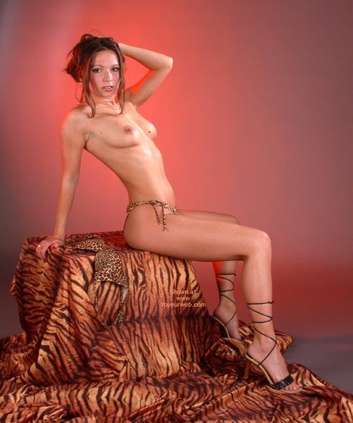 Pic #4 - *Lg Natalie In Tiger Look