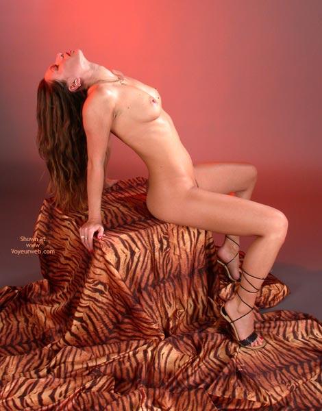 Pic #9 - *Lg Natalie In Tiger Look