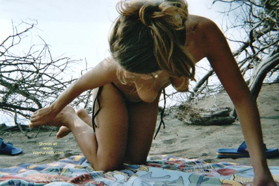 Pic #2 - New Wicked Weasel