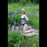 I Like To Be In The Woods Absolutely Naked
