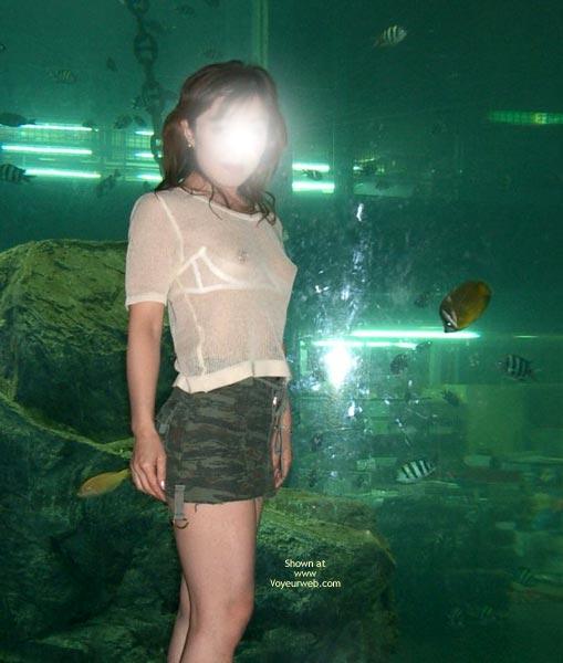 Pic #4 - Jasmine At Aquarium