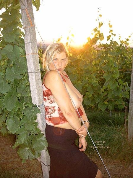 Pic #2 - Blondes Wunder