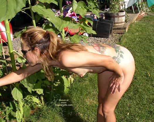 Pic #3 - Gardening With Tittie Larue