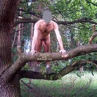 M* Molestia in Nature