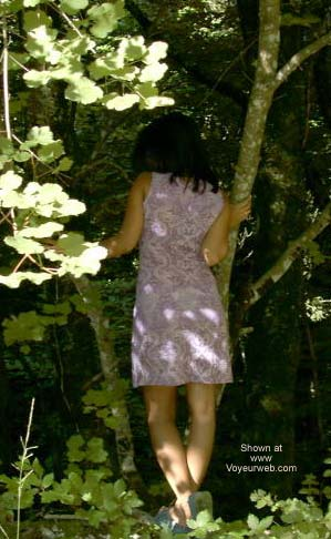 Pic #1 - Aiko Likes The Forest