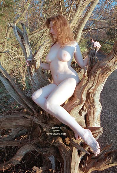 Pic #1 - English Wife - Driftwood