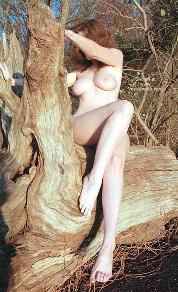 Pic #10 - English Wife - Driftwood