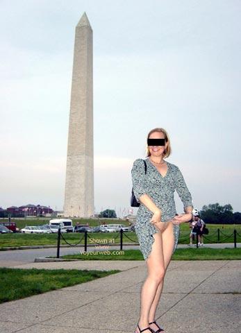 Pic #5 - Flash Cards, Bunny At Washington Monument, Dc