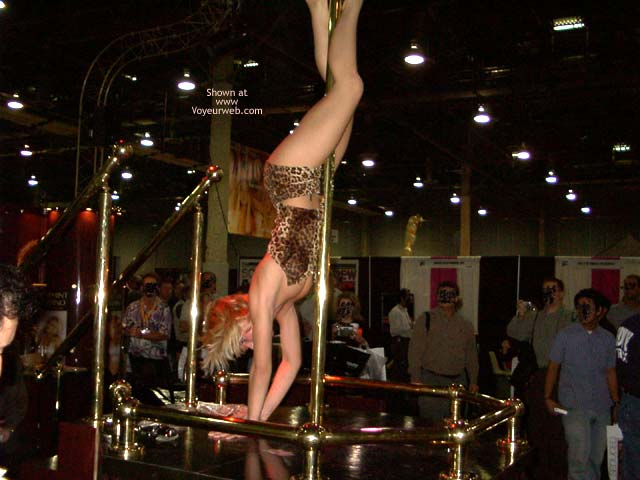 Pic #5 - Real Porn Stars From 2002 Vegas Expo