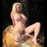 Ashley'S Log