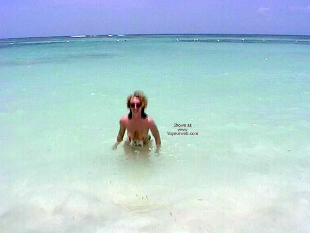 Pic #1 - Beachbird Tits