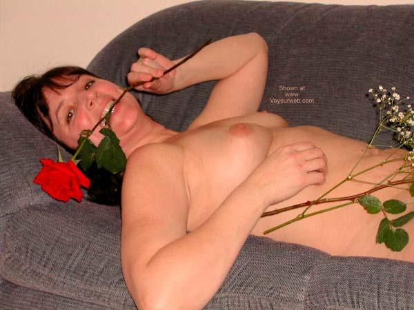 Pic #4 - *VT Heidi's Roses