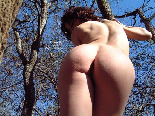 Pic #5 - Blue Ridge Beauty Up a Tree