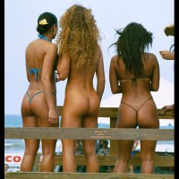 Three Asses