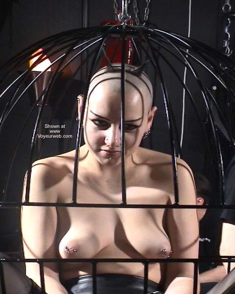 Pic #8 - German Erotic Fair Venus 35