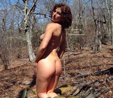 Pic #2 - Blue Ridge Beauty and the Moss Log