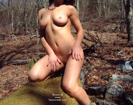 Pic #5 - Blue Ridge Beauty and the Moss Log