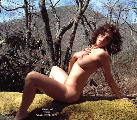 Pic #6 - Blue Ridge Beauty and the Moss Log